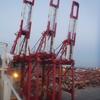 港のキリン⁉コンテナターミナルで働くガントリークレーンとは