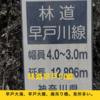 林道シリーズ:早戸川線と廃吊り橋。