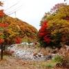 済州島(チェジュ島)10月のおすすめ観光スポット<暖かな日差し 柔らかな色に染まる済州>