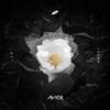 Avicii - Lonely Together ft. Rita Oraの歌詞を和訳してみました