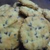 いつものチョコチップクッキー