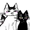 ニャンニャンニャンの日なので(=^ェ^=)♬うちの猫たちです♬