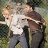 ウォーキング・デッド/シーズン3後半【9話-16話まとめて】あらすじとネタバレあり(Walking Dead)