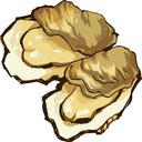 兵庫牡蠣祭ブログ | 相生・赤穂・網干・室津のかきまつり