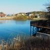 神池(愛知県大府)