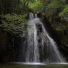 馬場の滝(鳥取県)~特徴的な岩肌を持つ魅力的な段瀑~