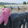 多摩川サイクリングロードの上流まで行ってきたよ