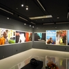 Ryu Yudai  フォトグラファー HARUKIさんの写真展「熱い風」2017.10.20-25 新宿のオリンパスギャラリーにて開催中