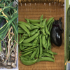 6月初旬の家庭菜園