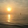 5月になっても安定の一匹が釣れた。三河湾カヤックフィッシング
