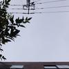 作曲工房 朝の天気 2018-09-30(日)早朝雨、のち曇り(撮影時)、午後から雨。台風第24号(チャーミー)上陸。