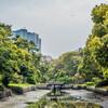 サトザクラを観る @東京都中央区浜離宮庭園