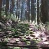 奈良から海へ!熊野古道 大峯奥駈道 170km 5泊6日テント泊縦走!(小雲取越・大雲取越編)