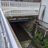 山崎川の源流を求めて その11 南山高付近の暗渠部 ~ 隼人池