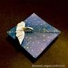 七夕折り紙の変わりダネ、夜空を羽ばたく白鳥をどうぞ。