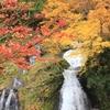 山形で遊んでみた【紅葉とグルメと秋遊び】