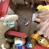 DAY2・「遊ぶ」について~新型コロナにより行き場を失った子どもたちの日常を支えてきました~