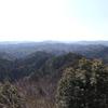 春の房総を歩く〜1.大福山から白鳥神社(市原市)