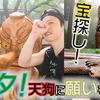 【多摩トレランアテンド】天狗と梟と龍が住む?!東京 南高尾で木彫りトレラン