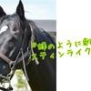 愛馬たちの宣材写真を作ってみた。