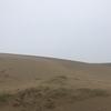 【砂丘を見たくなったので】鳥取に行ったけど、台風直撃でえらい目にあいました