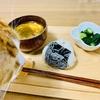 お米と猫が好きな人は、炊飯器の蒸気口にご注意!