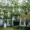 京都大学へ出かける