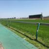 馬ファンタジスタのつぶやき セントライト記念2019