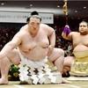 新横綱・稀勢の里が初優勝 大相撲トーナメント