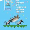 どうぶつタワーバトル日記~レート1500代編~#2