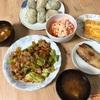 今日の晩御飯 今日は豆腐はお休みです