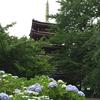 【御朱印】あじさいの名所・千葉県 本土寺へ参拝