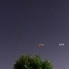 6月4日(火)晴れ 麦星、真珠星、土星