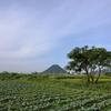 一日一撮 vol.720 散歩写真:讃岐富士