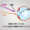 紫外線+HEVカットに調光機能が付加された「ASAHI 1.74UV3G PHOTO」