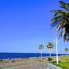 城南島海浜公園 TOKYOアーバンフィッシング