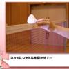 【練習紹介】極み返し ~ピンチに備えろ!~
