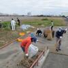 森ヶ崎水再生センター屋上営巣地春の整備作業について
