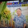 モンゲ―バナナと生きる力