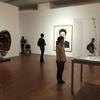 視覚芸術百態 19のテーマによる196の作品展(続き×2)。