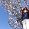 しっくす花見温泉旅行01 桜前線北上中