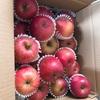 ふるさと納税 りんごが届いた