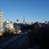 正月の東京は本当に人が少ないのか?