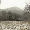 日光市奥日光の戦場ヶ原で積雪を観測!GW後の積雪はかなり珍しく、季節外れの雪に!!