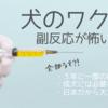 【狂犬病】犬のワクチンの副反応(副作用)が怖い?!【混合ワクチン】