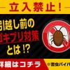 福岡講倫館高校のいじめをなくします 裏サイト掲示板ブログ 福岡