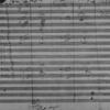 今、ベートーヴェンを聴く意味とは。交響曲 第5番〝運命〟より第2~4楽章