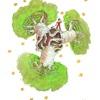 【星の王子様】バオバブの木とコロナ騒動