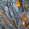 ライルのスノーファンタジーと、雪化粧レール