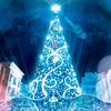 クリスマスツリーを片付ける~名もなき家事編~